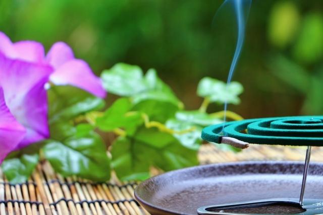 蚊取り線香の使用イメージが出来る画像