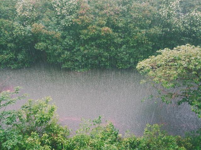 川に降り注ぐ雨